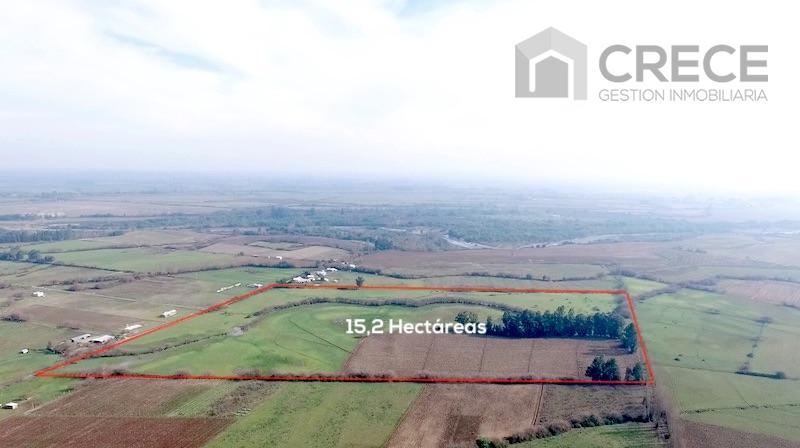 Parcela 15,2 hectáreas Sector La Conquista, Longaví, VII región del Maule, Chile