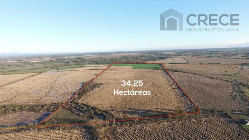 Parcela de 34,25 hectáreas a 18Km de Parral, VII Región