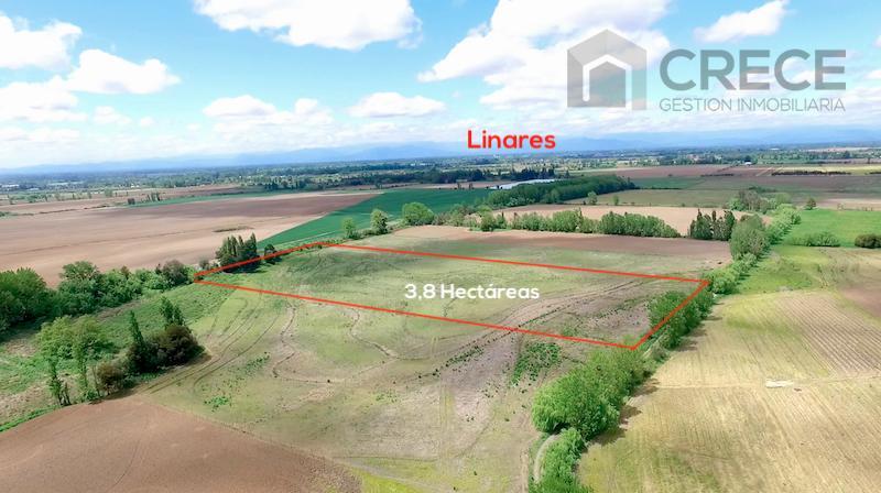 Parcela Agricola Linares, 3,8 has, VII región del Maule, CHILE