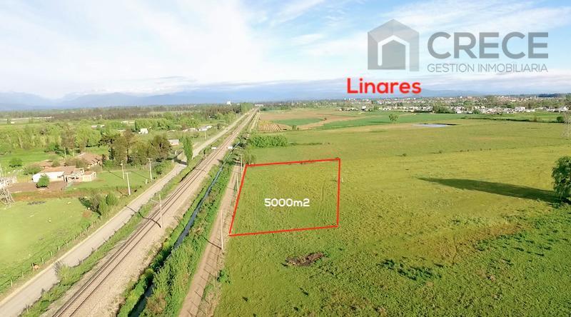 Parcela Linares, 5000m2, Alonso de Ercilla, VII región del Maule, CHILE