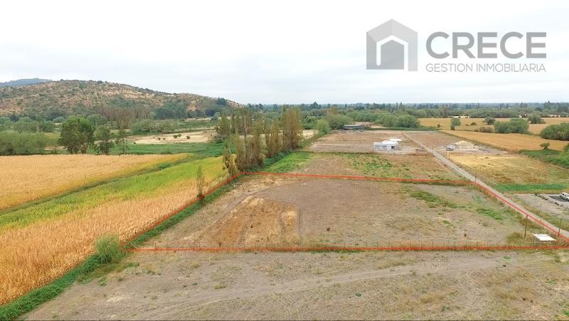 Parcela 5000m2 Coironal, Yerbas Buenas, Linares, VII region del Maule, CHILE