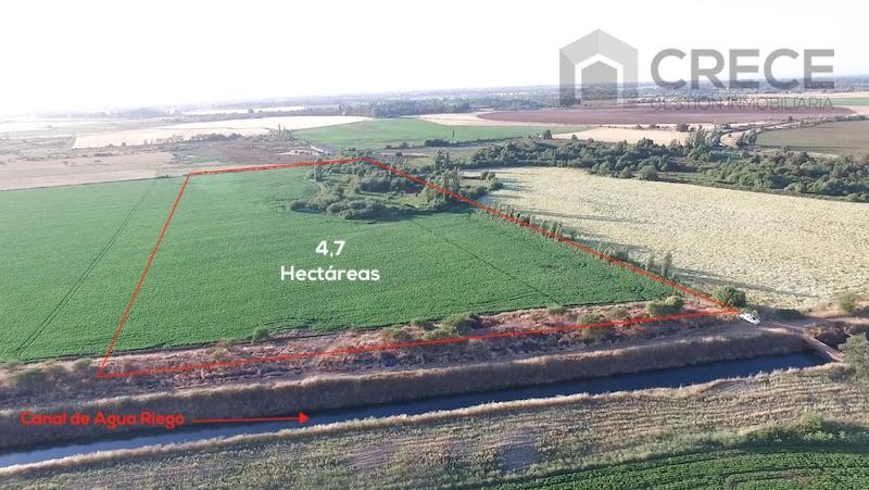 Parcela Agricola Parral, 4,7 hectáreas, Villa Rosa, VII Región, CHILE