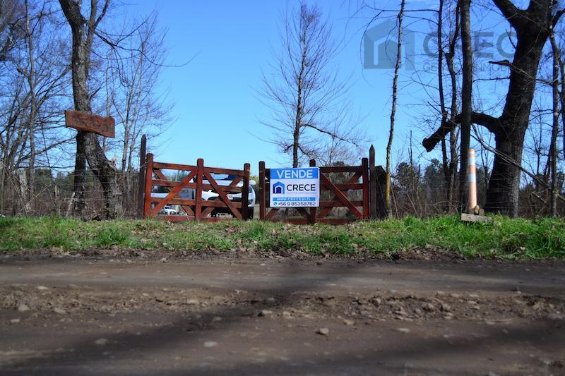 Parcela Ñiquen, 3,3 hás + 1,56 acciones de agua, VIII region