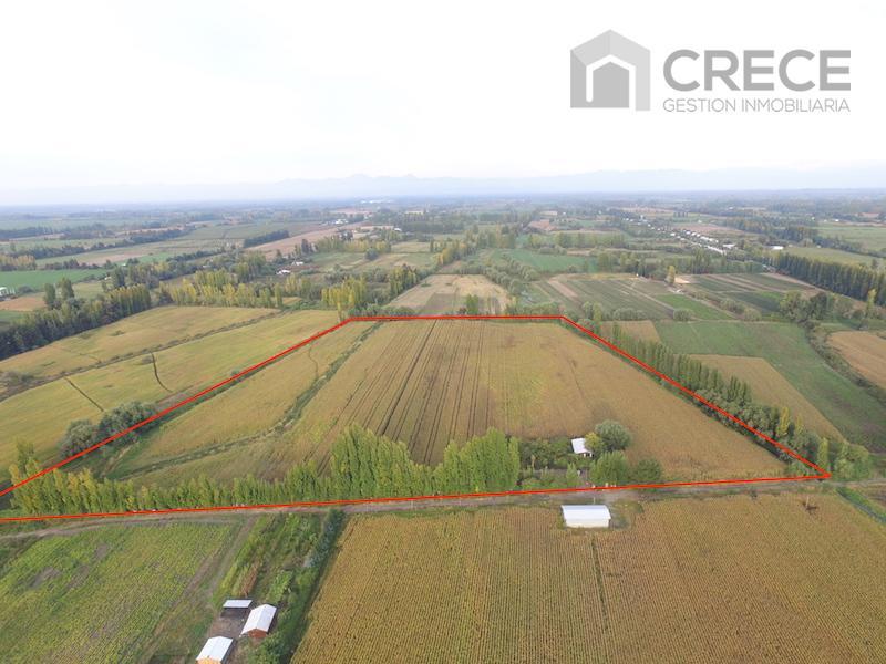 Parcela 8 hectáreas + casa a solo 8Km de San Javier, VII región del Maule